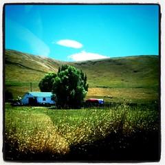 Farmhouse outside Napier