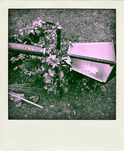 fall of narnia