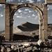 Palmyra Views ii