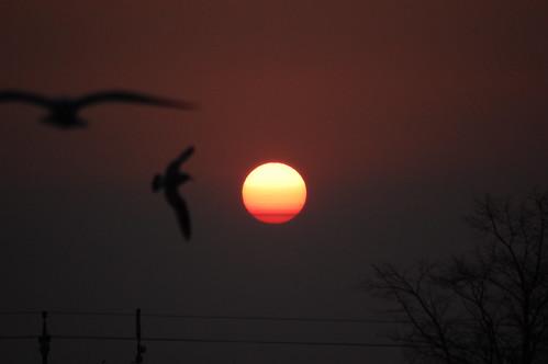 Sunrise, Just Before 7 AM by brandsvig