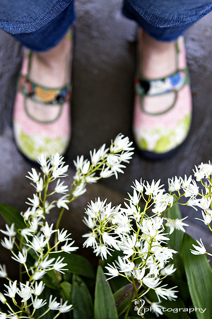Shoe thang