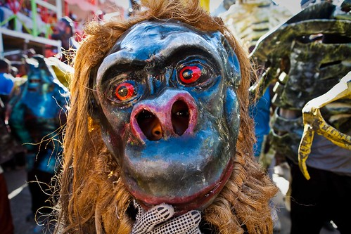 Monkey-Mask
