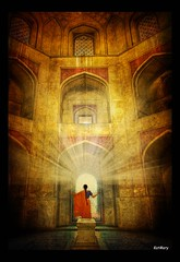 Seeking the light by katmary