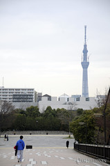 Sky tower 東京 日本。Tokyo Japan.