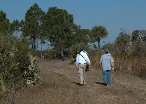Wilbur and Donuts looking for the hard to find Florida Scrub Jays