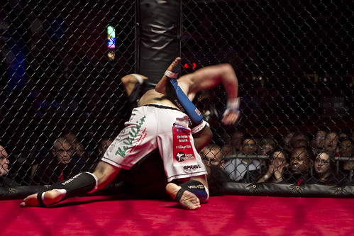 MMA Fight 2