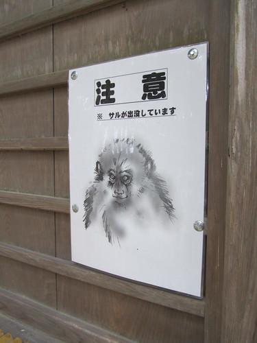 "Does this say ""warning - monkeys""?!"