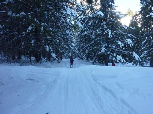 Sundance Snowshoeing 1 - distance