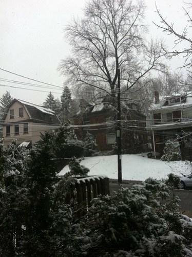 View of winter, resurgent.
