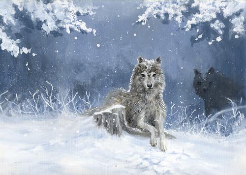 Snowy hunt