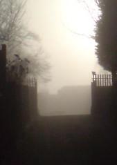 Return to Mist Early Feb 2011