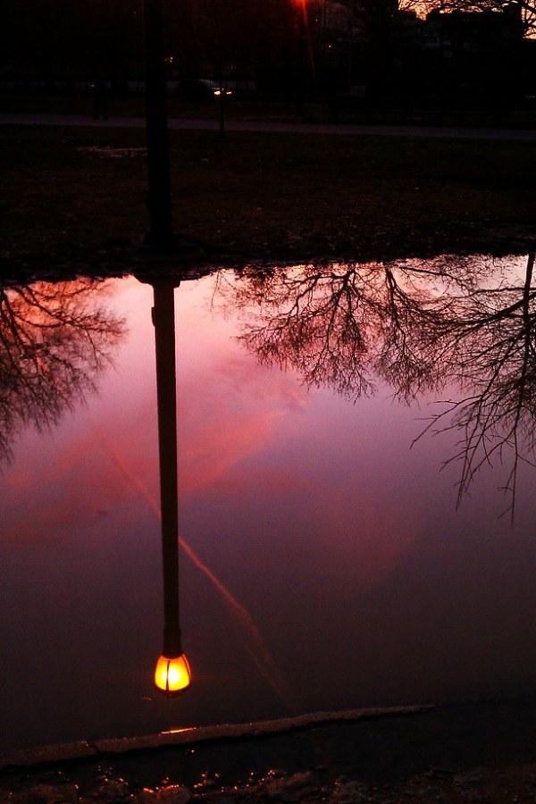 Reflection in McCarren