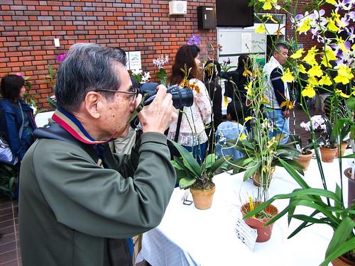 Flowers in Japan