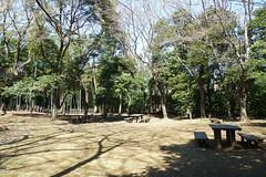 小机城址市民の森(二の丸広場)
