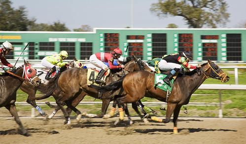 race34fl2