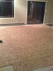 Sub-floor in the living room is mostly down!