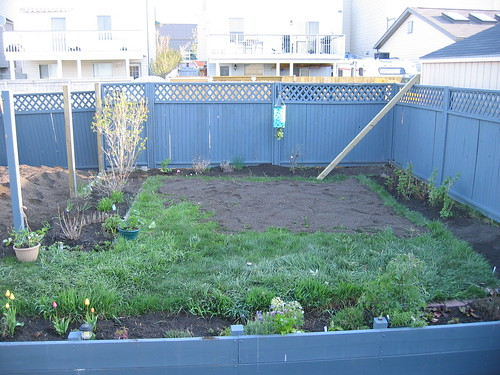 Gartenprojekt 2011 021