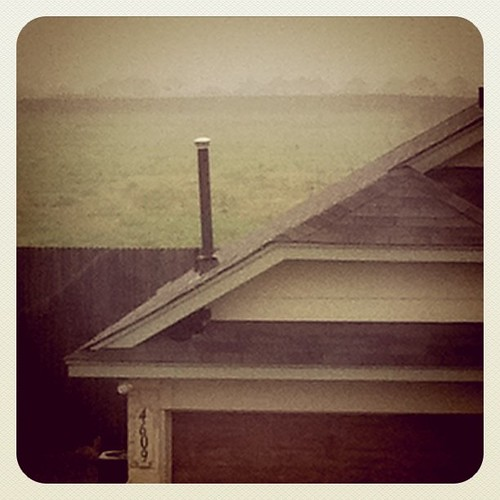 Yes, that's my cat on my neighbor's roof this morn.