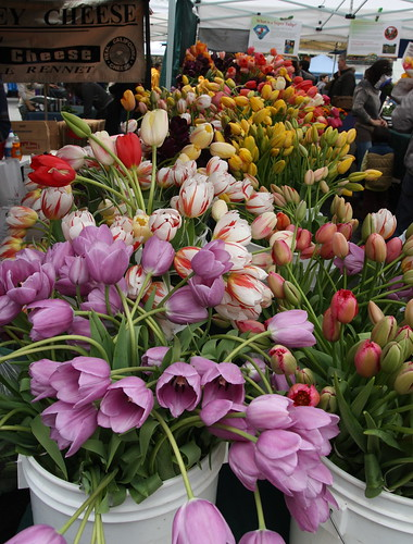 Tulips at Temescal Farmer's Market