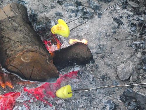 peeps in the fire