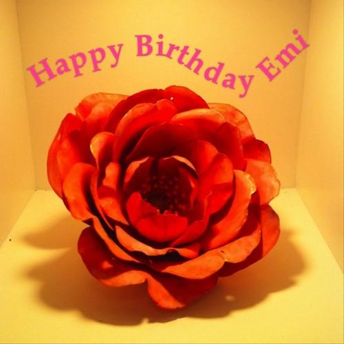 @hhhaaapppy おめでとうございまーす(*'∇')/゚・:*【祝お誕生日】*:・゚\('∇'*) #hb_emi