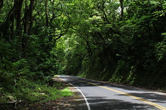 Road to Hana, Maui, Hawaiian Islands