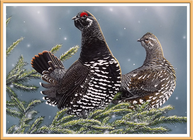 Birds in Wintertime by Charles Black