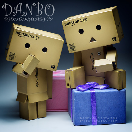 132/365:  Danbo Family Portrait Series:  The Twins.