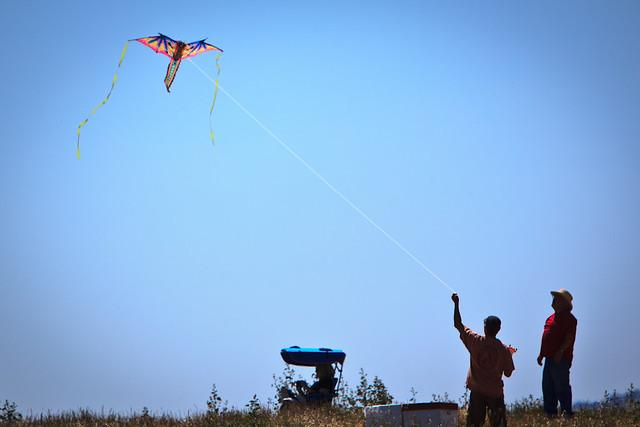 Flying a Kite!