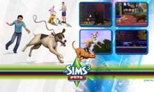 Pets01-1280x768
