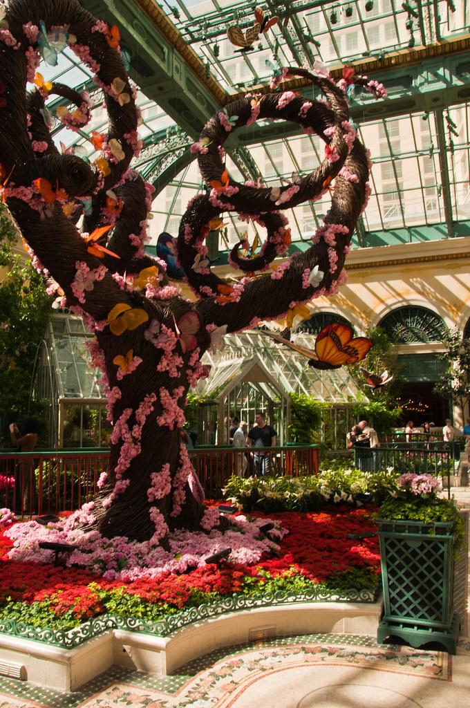 In the greenhouse, Bellagio Hotel, Las Vegas