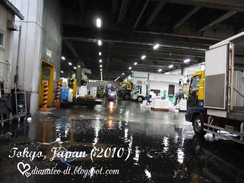 tsukiji 06