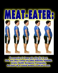 The Effects of a Paleolithic Omnivore Meat bas...