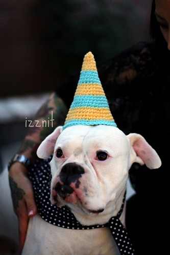 Stinky's Party hat
