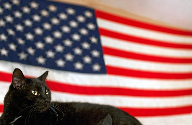 Cooper is American