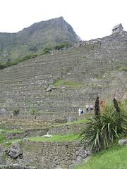 2004_Machu_Picchu 28