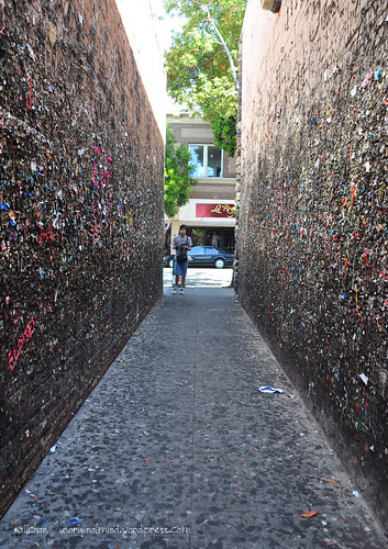 Day1; Gum Alley