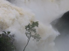 World Famous Jog Falls Photography By CHINMAYA M.RAO Set-1 (142)
