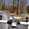 George Washington National Forest #cycling
