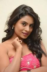 South Actress Deepika Das Hot in Pink Dress- Photos Set-6 (16)