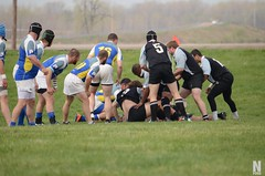 "Ruggerfest - Bombers vs Royals 3 • <a style=""font-size:0.8em;"" href=""http://www.flickr.com/photos/76015761@N03/13918319025/"" target=""_blank"">View on Flickr</a>"