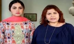 Rishta Anjana Sa Episode 77 Full by Ary Digital Aired on 21st November 2016