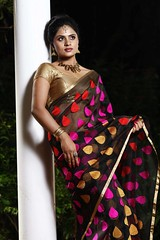 South Actress Deepika Das Traditional Photos Set-1 (15)