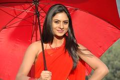 South Actress Deepika Das Hot in Red Sari Photos Set-5 (8)