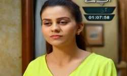 Saheliyan Episode 77 Full by Ary Digital Aired on 29th November 2016