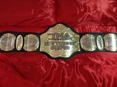 TNA WORLD HEAVYWEIGHT CHAMPIONSHIP REPLICA