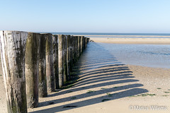 """Ameland • <a style=""""font-size:0.8em;"""" href=""""http://www.flickr.com/photos/139061502@N06/30468320602/"""" target=""""_blank"""">View on Flickr</a>"""