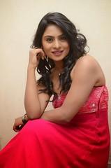 South Actress Deepika Das Hot in Pink Dress- Photos Set-6 (23)