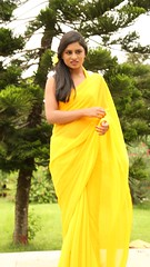 South Actress Deepika Das Hot in Yellow Sari Photos Set-2 (1)