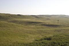 Sandhills